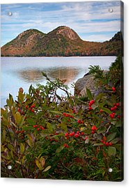 Jordan Pond With Berries Acrylic Print