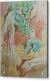 Jordan River Sources Acrylic Print by Esther Newman-Cohen