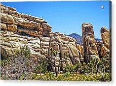 Joshua Tree - 10 Acrylic Print by Gregory Dyer