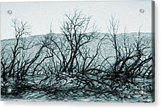 Joshua Tree - Burned Out Trees Acrylic Print by Gregory Dyer