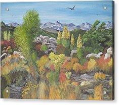 Joshua Tree Park Acrylic Print by Hilda and Jose Garrancho