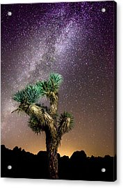 Acrylic Print featuring the photograph Joshua Tree Vs The Milky Way by Robert  Aycock