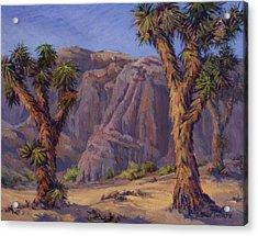 Joshua Trees- Mojave Acrylic Print