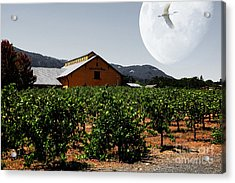 Journey Through The Valley Of The Moon 5d24485 Acrylic Print by Wingsdomain Art and Photography