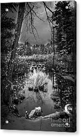 Journey To Hope Acrylic Print by Sue OConnor