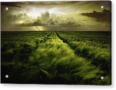 Journey To The Fierce Storm Acrylic Print