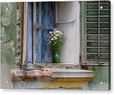 Joy In The Window Acrylic Print