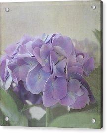 Joy Is.... Acrylic Print by Kim Hojnacki