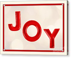 Acrylic Print featuring the photograph Joy To The World by Vizual Studio