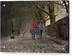 Joyeux Noel - Merry Christmas Acrylic Print by Lianne Schneider