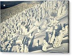 Juhyo Hakkoda Honshu Japan Acrylic Print by Mike Banks