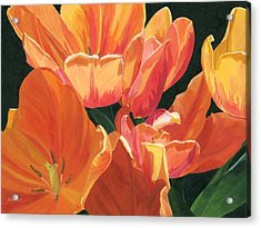 Julie's Tulips Acrylic Print by Lynne Reichhart