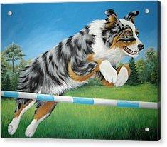 Jumping Aussie Acrylic Print