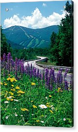June In Franconia Notch Acrylic Print