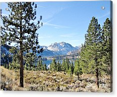 Acrylic Print featuring the photograph June Lake by Marilyn Diaz
