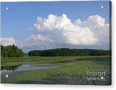 June Reservoir Acrylic Print by Betsy Cotton