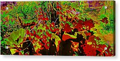 Jungle Abstract Acrylic Print by Mike Breau