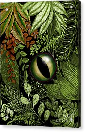 Jungle Eye Acrylic Print by Carol Jacobs
