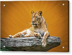 Jungle Queen Acrylic Print