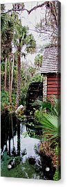 Jungle Water 2 Acrylic Print by Will Boutin Photos