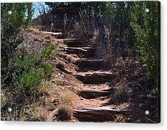 Juniper Ridge Steps Acrylic Print