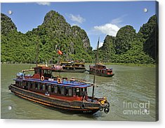 Junk Boats In Halong Bay Acrylic Print by Sami Sarkis