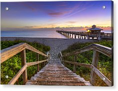 Juno Beach   Acrylic Print by Debra and Dave Vanderlaan