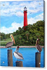 Jupiter Inlet Pelicans Acrylic Print