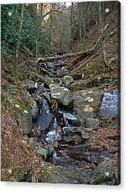 Just A Creek Acrylic Print by Skip Willits