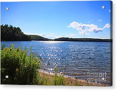 Just A Summer Day  Acrylic Print by Cathy  Beharriell