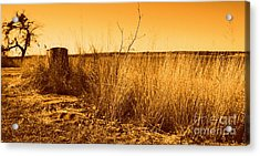 Just A View Acrylic Print by Mickey Harkins