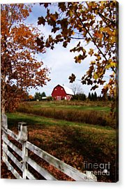 Just Across The Fence Acrylic Print