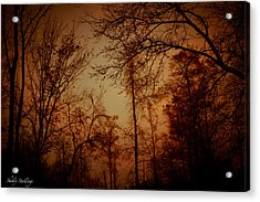 Acrylic Print featuring the photograph Just After Sunset by Shelly Stallings