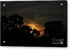 Just Before Dark Acrylic Print by Michelle Meenawong