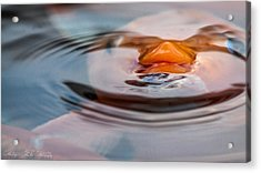 Just Below The Surface  Acrylic Print by Hastings Franks