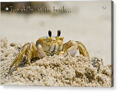 Just Chillin On The Beach Acrylic Print by Jeff Abrahamson