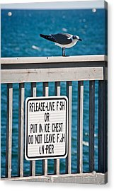 Just Fishing Acrylic Print