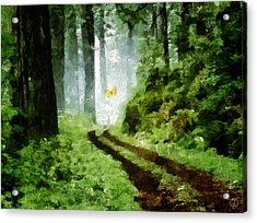 Just Follow Me Acrylic Print by Gun Legler