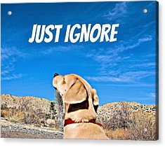 Just Ignore Acrylic Print by Angela J Wright