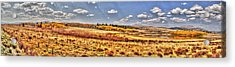 Just North Of Fairplay Colorado Acrylic Print