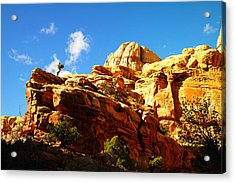 Just One Tree Acrylic Print by Jeff Swan