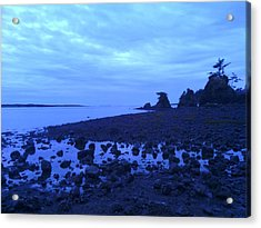 Just The Right Tide Acrylic Print by Sheldon Blackwell