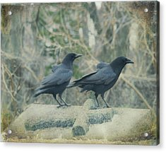 Just The Two Of Us Acrylic Print by Gothicrow Images