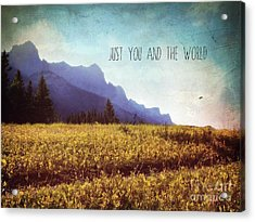 Acrylic Print featuring the photograph Just You And The World by Sylvia Cook