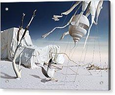 K206 Acrylic Print by Radoslav Penchev