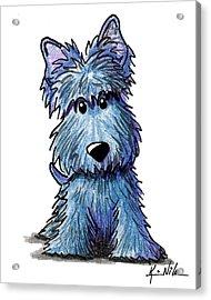 K9 Keanu Scottie Terrier Acrylic Print by Kim Niles