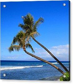 Kaanapali Hawaii Acrylic Print by DJ Florek