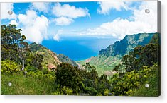 Kalalau Valley  Acrylic Print by Adam Pender