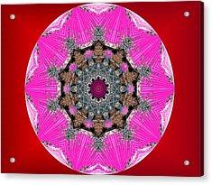 Kaleidoscope Acrylic Print by Mike Breau