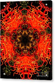 Kaleidoscope Of Blown Glass Acrylic Print by Amy Cicconi